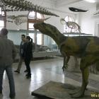 relicve dinozaur