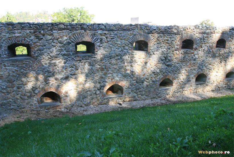 zid cetate