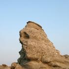 Dacian head