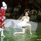 clown-ballerina