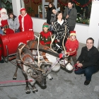 Romanian reindeer