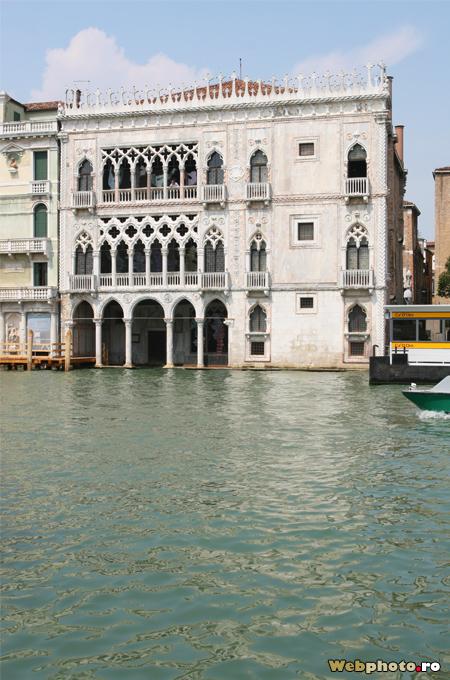 goticul venetian
