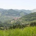 grass village