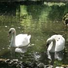Bucuresti parc