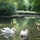 park Bucharest