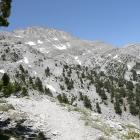 barren mount