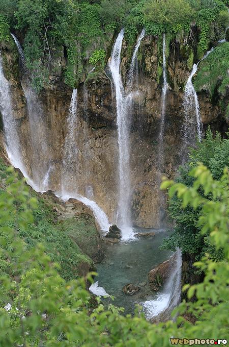 cascada salbatica