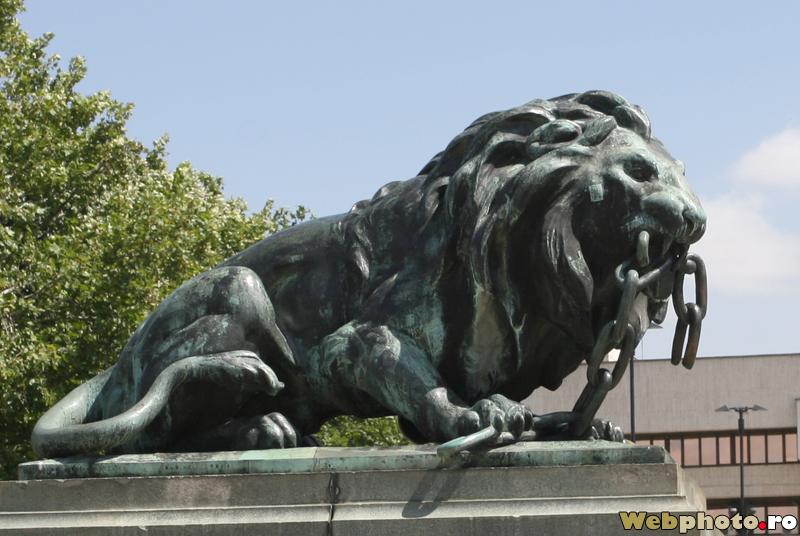 statuie leu