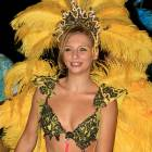 yellow_feathers