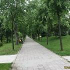 parcul dragalina