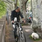 parrot_bike