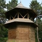 biserica lemn